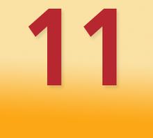 SBV-Wahlen 2014