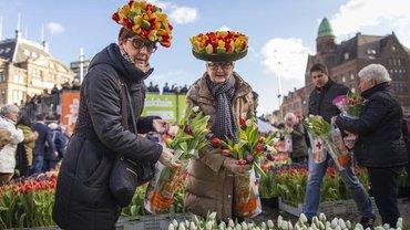 Alterssicherungssystem der Niederlande