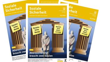 Cover der Zeitschrift Soziale Sicherheit, Ausgabe 12-2020. Auf dem Titel ein Mann vor zwei Säulen