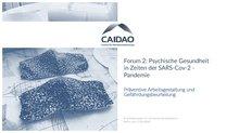 """Titelseite der Präsentation von CAIDAO: """"Forum 2"""""""